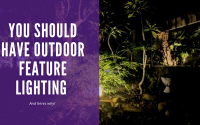 You should have Outdoor Feature Lighting, and here's why